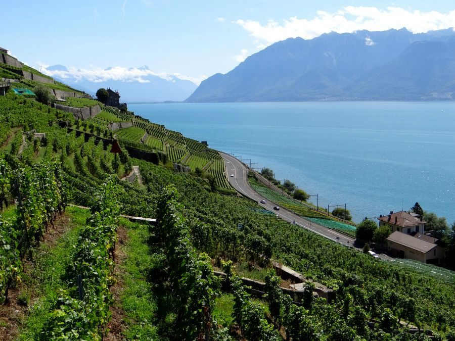 Travel Guide to Lavaux Wine Region