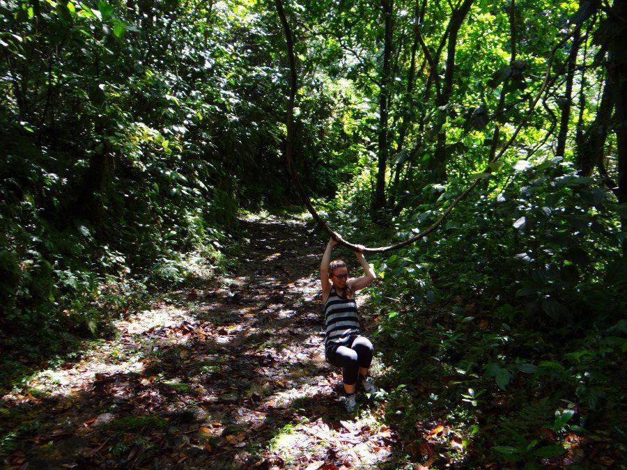 Adventure Guide to Dominica