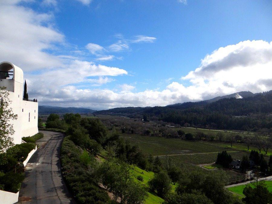 Top vineyards in Napa Valley