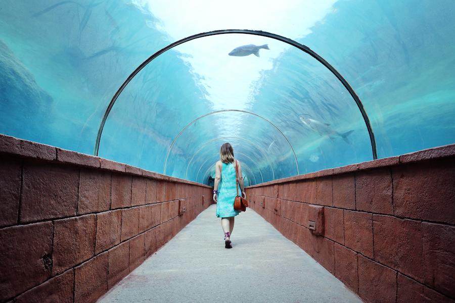 underwater museum in Atlantis